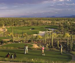 Ritz Carleton Dove Mountain Golf Course #12